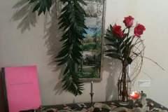 Moretti-Willow-Seasons-Must-Be