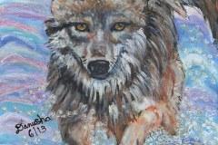 Rudaitis-Summer-Wolf