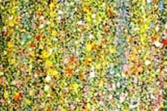 Fernandez-shebeko-Yellow-Butterfly